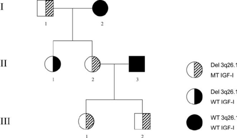 Ch. 12 – Inheritance Patterns and Human Genetics